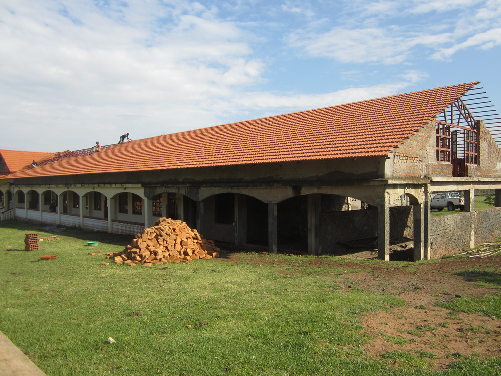 Roof Tiles On Last Primary Section